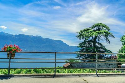 The UNESCO World Heritage Site of the Lavaux Vineyards near Lausanne in Switzerland.- albinhillert-Photographic Print