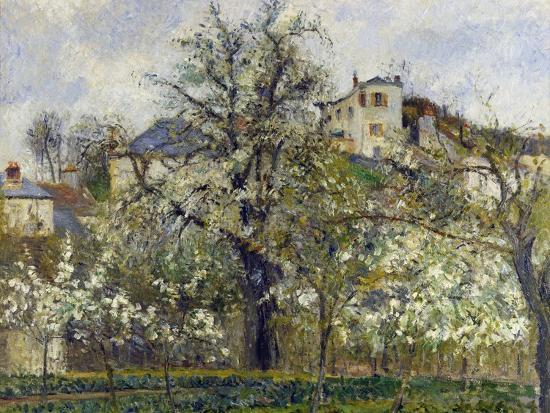 The Vegetable Garden with Trees in Blossom, 1877-Camille Pissarro-Giclee Print
