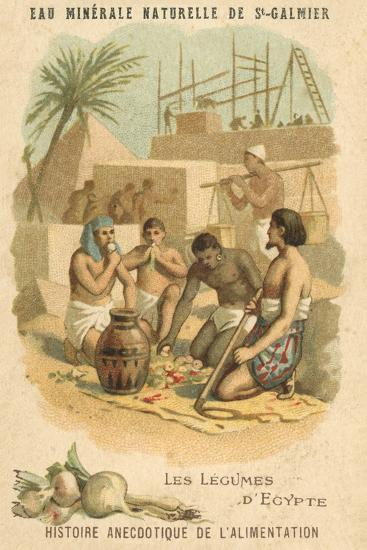 The Vegetables of Egypt--Giclee Print