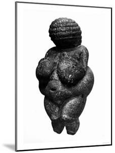 The Venus of Willendorf, Side View of Female Figurine, Gravettian Culture, Upper Paleolithic Period