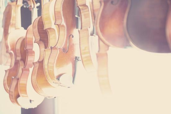 The Violin-Laura Evans-Photographic Print