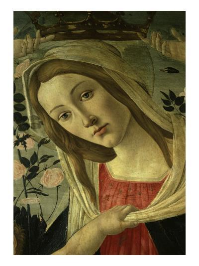 The Virgin and Child Surrounded by Angels-Sandro Botticelli-Giclee Print