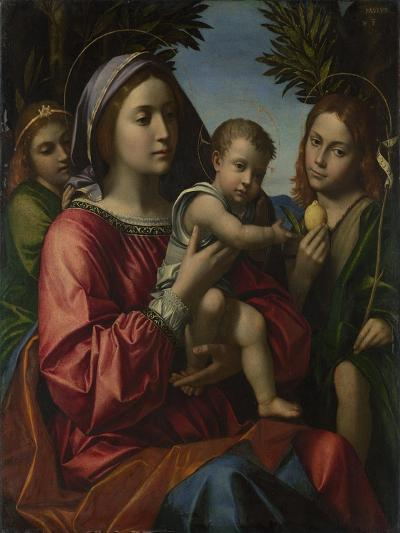 The Virgin and Child with the Baptist and an Angel, C. 1516-Paolo Morando-Giclee Print