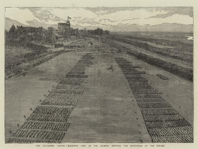 The Volunteer Review, Birds'-Eye View of the Ground, Showing the Disposition of the Forces--Giclee Print