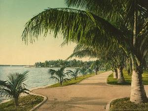 The Walk at Palm Beach, C.1898