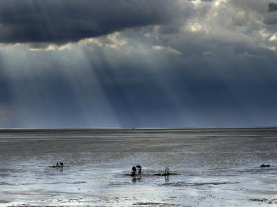 The Wash, Norfolk, Beach Landscape with Storm Clouds and Bait Diggers, UK-Gary Smith-Photographic Print