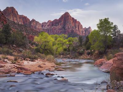 The Watchman, Cottonwood, Virgin River, Zion National Park, Utah, Usa-Rainer Mirau-Photographic Print