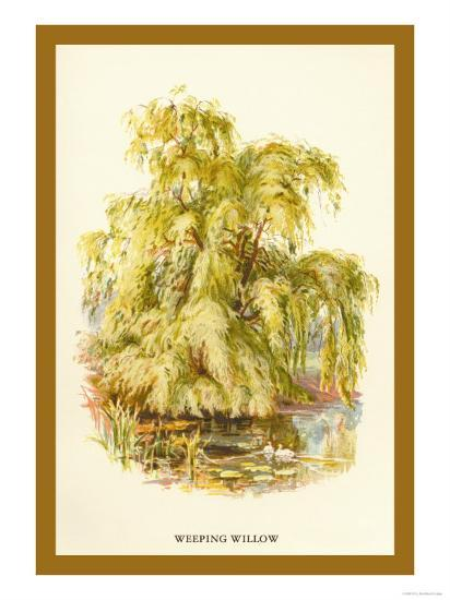 The Weeping Willow-W^h^j^ Boot-Art Print