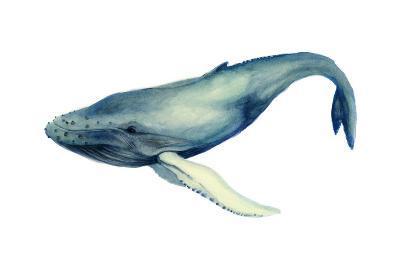 The Whale's Song I-Grace Popp-Art Print