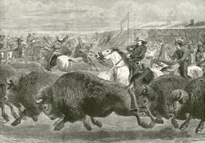 The Wild West at the Great American Exhibition - Hunting Bison and Wapiti Deer