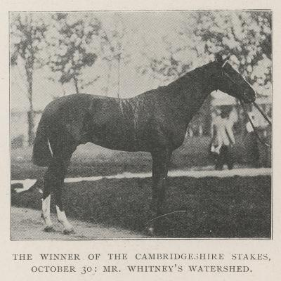 The Winner of the Cambridgeshire Stakes, 30 October, Mr Whitney's Watershed--Giclee Print