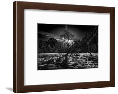 The Winter Spirit-Simon ChengLu-Framed Photographic Print