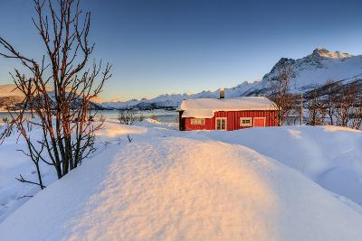 The Winter Sun Illuminates a Typical Norwegian Red House Surrounded by Fresh Snow-Roberto Moiola-Photographic Print
