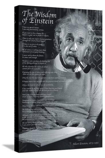 The Wisdom of Einstein--Stretched Canvas Print