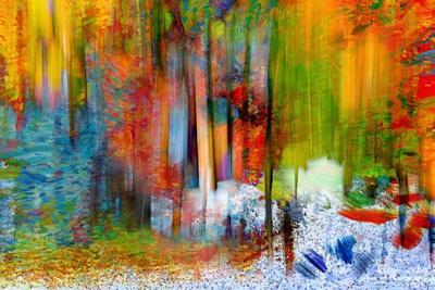 https://imgc.artprintimages.com/img/print/the-woods-in-summer_u-l-q1h34kb0.jpg?p=0