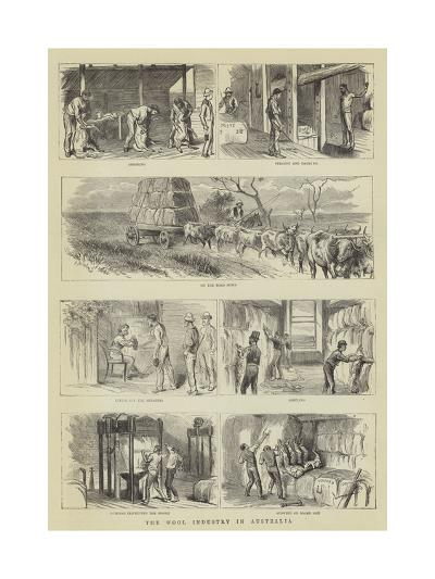 The Wool Industry in Australia--Giclee Print