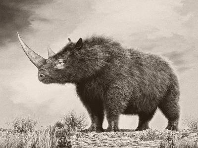 The Woolly Rhinoceros Is an Extinct Species from the Pleistocene Epoch--Art Print