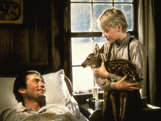 the-yearling-gregory-peck-claude-jarman-