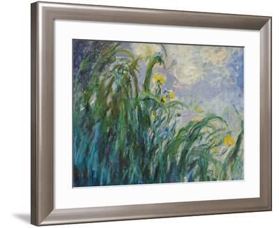 The Yellow Iris-Claude Monet-Framed Giclee Print