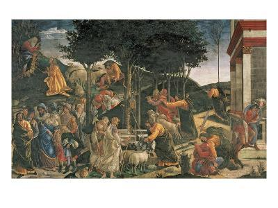 The Youth of Moses, in the Sistine Chapel, 1481 (Fresco) (For Detail See 315896)-Sandro Botticelli-Giclee Print