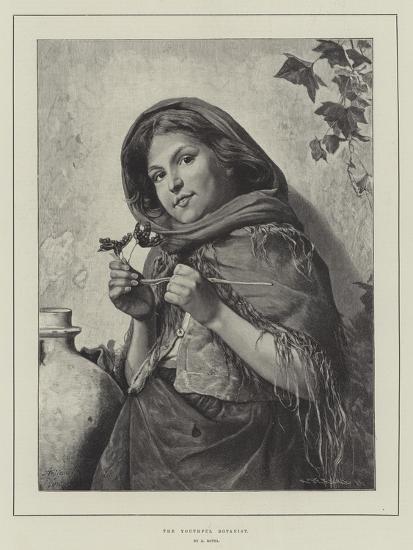 The Youthful Botanist-Antonio Rotta-Giclee Print