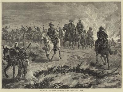 The Zulu War, Volunteers Burning Kraals and Driving Away Cattle--Giclee Print
