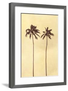 Palm Vista II by Thea Schrack
