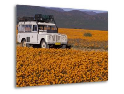 4X4 in Meadow of Daisies, South Africa