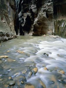 The Narrows, Zion National Park, Utah, USA by Theo Allofs