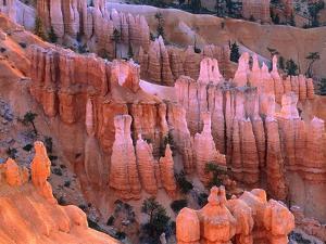 USA, Utah, Bryce Canyon by Theo Allofs