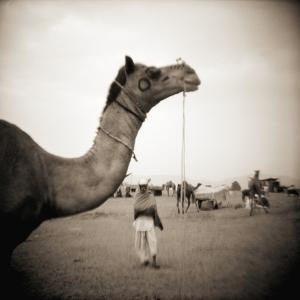 Camel Fair in Pushkar, India by Theo Westenberger
