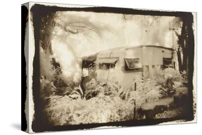 Caravan deep in the woods, Queensland, Australia