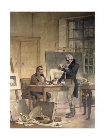 Cuvier Gathers Documents for His Work on the Fossil Bones