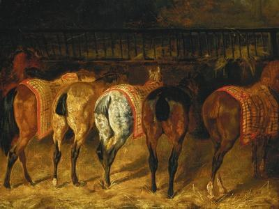 Five Horses Viewed from the Back