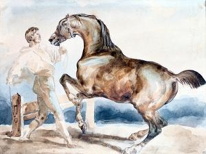 Le Dressage, Early 19th Century by Theodore Gericault