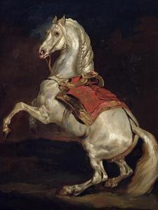 Napoleon's Stallion, Tamerlan by Théodore Géricault