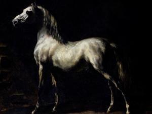 Study of a Dapple Grey by Théodore Géricault