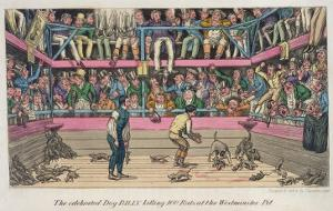 Celebrated Dog Billy Killing 100 Rats at Westminster Pit, c.1825 by Theodore Lane