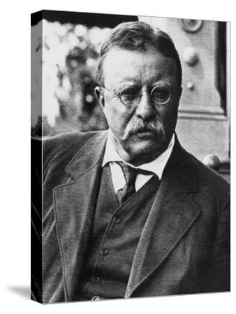 Framed Painting Portrait of President Theodore Roosevelt on Canvas 1905