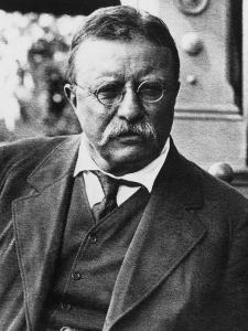 Theodore Roosevelt, 1900's