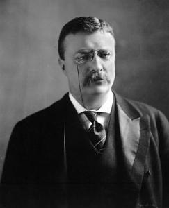 Theodore Roosevelt, 1902 Bust Portrait, with Unusual Soft and Reflective Expression