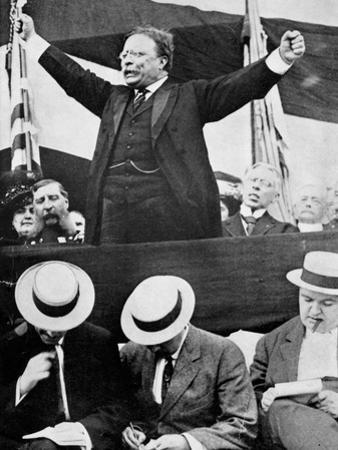 Theodore Roosevelt, American President, 1901-1909