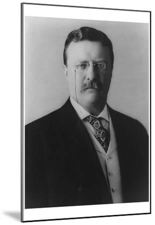 Theodore Roosevelt (Portriat) Archival Photo Poster Print  sc 1 st  Art.com & Beautiful Theodore Roosevelt artwork for sale Posters and Prints ...