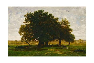 A group of oaktrees, Apremont, France. 1855 Canvas, 63,5 x 99,5 cm R. F. 1447.