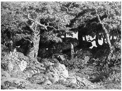 Les Chenes De Roche, C1832- 1860