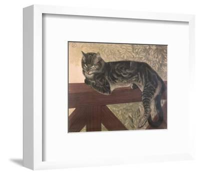 Cat on Balustrade