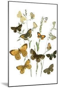 Chats by Théophile Alexandre Steinlen