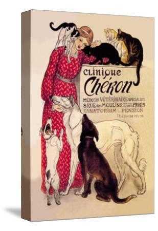 Clinique Cheron, Veterinary Medicine and Hotel