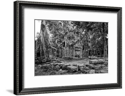 Theraveda Buddhist Monks at the Ta Prohm Temple in the Angkor Complex-Kike Calvo-Framed Photographic Print