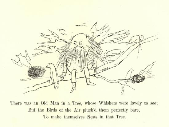 There Was an Old Man in a Tree, Whose Whiskers Were Lovely to See-Edward Lear-Giclee Print